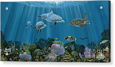 Fantasy Reef Re0020 Acrylic Print by Carey Chen