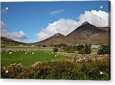 Farmland, Stone Walls In The Midste Acrylic Print by Panoramic Images