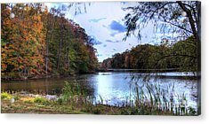 Farrington Lake Acrylic Print by Louise Reeves