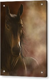 Feeling The Warmth Acrylic Print by Kate Black