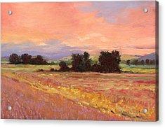 Field Glory Acrylic Print by J Reifsnyder