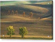 Fields... Acrylic Print