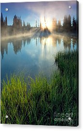 First Light Acrylic Print by Mike  Dawson