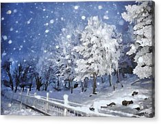 First Snow Acrylic Print by Gun Legler