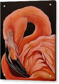 Flamingo Portrait Acrylic Print by Phyllis Beiser
