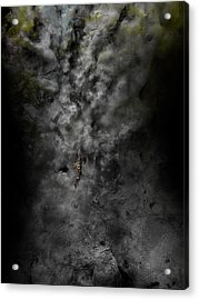 Floater Acrylic Print by David Fox