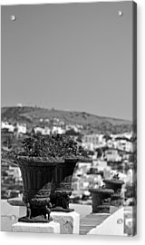 Flowerpots In Sifnos Island Acrylic Print by George Atsametakis