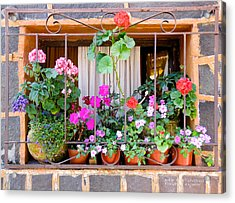 Acrylic Print featuring the photograph Flowers In A Mexican Window by David Perry Lawrence