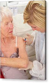 Flu Vaccination Acrylic Print by Lea Paterson/science Photo Library