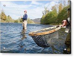 Fly Fishing For Steelhead Trout Acrylic Print