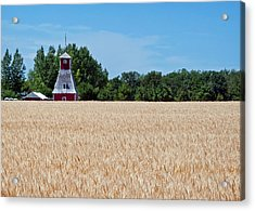 Fox Tower Acrylic Print by Keith Armstrong