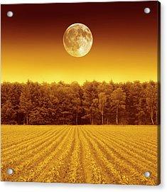 Full Moon Over A Field Acrylic Print by Detlev Van Ravenswaay
