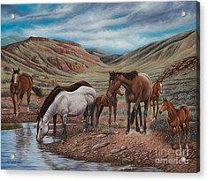 Gathering At Diablo Canyon Acrylic Print by Ricardo Chavez-Mendez
