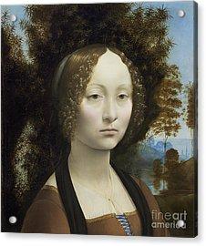 Ginevra De Benci Acrylic Print by Leonardo Da Vinci