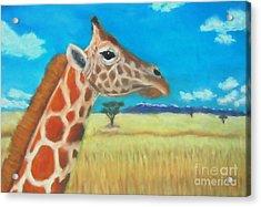 Giraffe Dreaming Acrylic Print