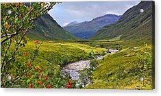 Glen Etive Scotland Acrylic Print by Jane McIlroy