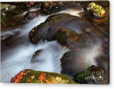 Glistening Rocks Acrylic Print