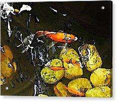 Goldfish Pond Acrylic Print by Sarah Loft