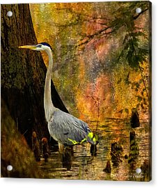 Acrylic Print featuring the digital art Great Blue Heron Slowly Fishing by J Larry Walker