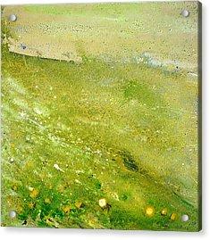 Green Field  Acrylic Print by Tanya Byrd