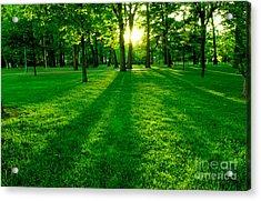 Green Park Acrylic Print by Elena Elisseeva