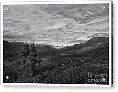 Guardians Of The Valley Acrylic Print