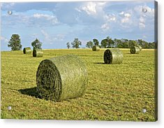 Hay Bales In Spring Acrylic Print