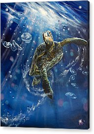 Honu's Dance Acrylic Print by Marco Antonio Aguilar