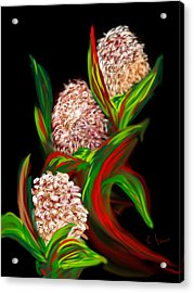 Hyacinth Acrylic Print by Christine Fournier