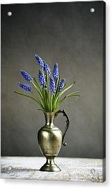 Hyacinth Still Life Acrylic Print