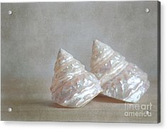 Acrylic Print featuring the photograph Iridescent Shells by Aiolos Greek Collections