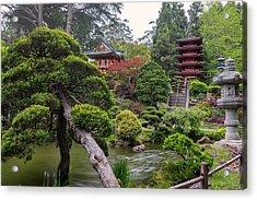 Japanese Tea Garden - Golden Gate Park Acrylic Print by Adam Romanowicz