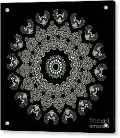 Kaleidoscope Ernst Haeckl Sea Life Series Black And White Set 2 Acrylic Print by Amy Cicconi