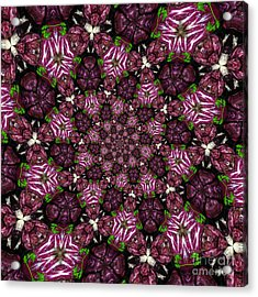 Kaleidoscope Raddichio Lettuce Acrylic Print