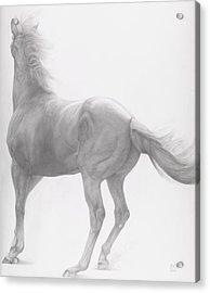 Kicking Off Acrylic Print by Emma Kennaway