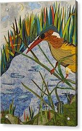 Kingfisher Acrylic Print by Lynda K Boardman