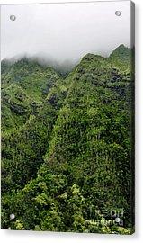 Acrylic Print featuring the photograph Ko'olau Mountain by Gina Savage