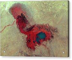 Lake Chad Acrylic Print by Nasa/science Photo Library