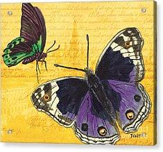 Le Papillon 4 Acrylic Print by Debbie DeWitt