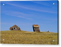 Leaning Into The Years Acrylic Print by Jeff Swan