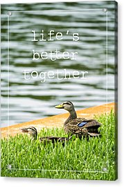 Life's Better Together Acrylic Print by Edward Fielding