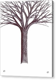 Acrylic Print featuring the drawing Second-generation....tree Without Roots by Giuseppe Epifani