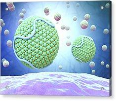 Low-density Lipoproteins Acrylic Print by Maurizio De Angelis
