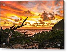 Makapuu Sunrise 4 Acrylic Print by Leigh Anne Meeks
