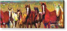 Mares And Foals Acrylic Print