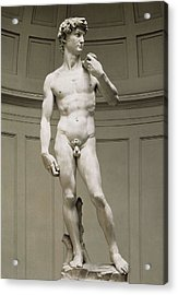 Michelangelo 1475-1564. David Acrylic Print by Everett