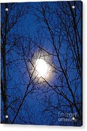 Moon Acrylic Print by Jennifer Kimberly