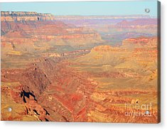 Morning Colors Of The Grand Canyon Inner Gorge Acrylic Print by Shawn O'Brien