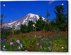 Mount Rainier Acrylic Print by Jerry Cahill