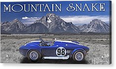 Acrylic Print featuring the digital art Mountain Snake by Ed Dooley